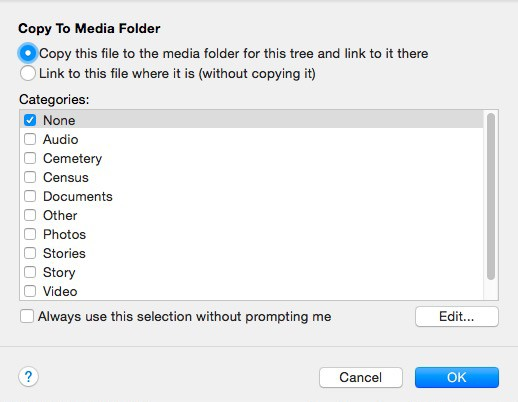 FTM Copy to Media Folder Window