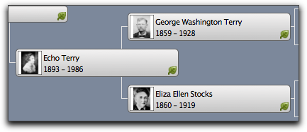Portraits in the Family Tree Maker 2 Pedigree View